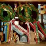 Auszeichnungen von Wettspielen